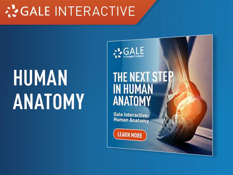 新增試用電子資料庫 - Gale Interactive: Human Anatomy